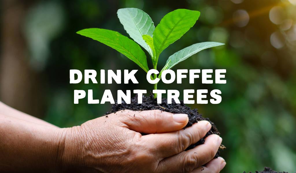 Drink Coffee plant a tree